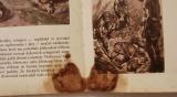 Dějiny psané kamenem - Kleibl (3)