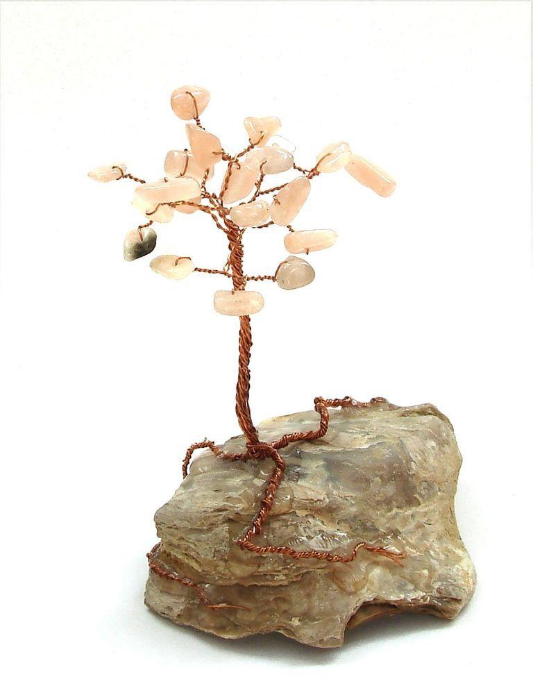 Stromeček štěstí ze slunečního (2)