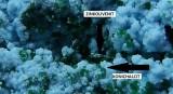 Arsenocrandallit, Zinkolivenit, Konichalcit -