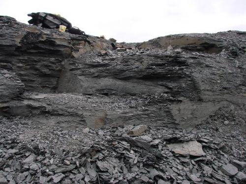 Místo sběru zkamenělých schránek amonitl