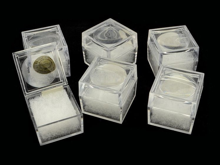 Plastová krabička na minerály a fosílie s lupou 1ks